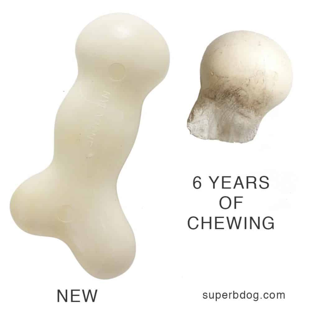 Nylabone before and six years after chewing